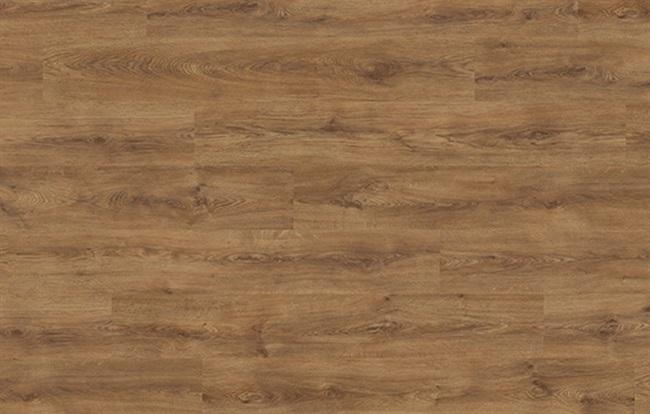 Oak Veyron